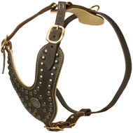 Royal Design Leather Dog Harness with Brass Studs