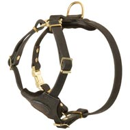 Spruce Leather Dog Harness With Small Chest Plate