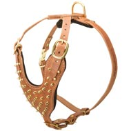 Brass Spiked Leather Dog Harness for Fashion Walking