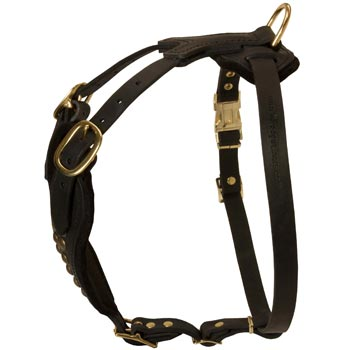 Easy Adjustable Leather Dog Harness