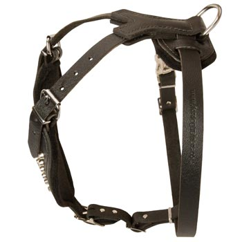 Custom Made Leather Dog Harness