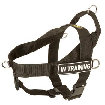 Dog Nylon Harness with ID Patches