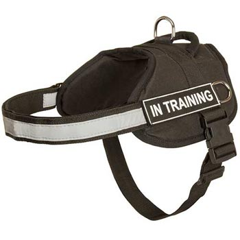 Nylon Dog Harness Multifunctional All-Weather Practical