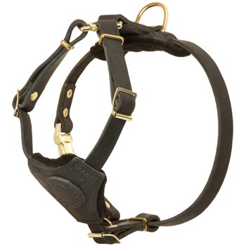 Light Weight Leather Puppy Harness for Dog