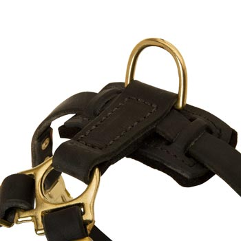 D-ring on Leather Dog Harness for Puppy Training